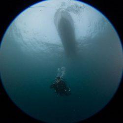 Dive Master - Buceo Algarrobo