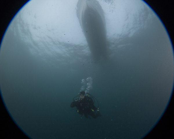 Dive Master Buceo Algarrobo Chile 1