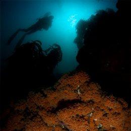 Buceo-Algarrobo-Especialidad-de-Nitrox