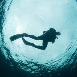Buceo Algarrobo-Otras Especialidades